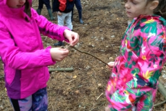 Year 3 Forest Schools