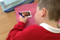 Year 4 Investigating Adverts