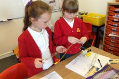 Year 4 Science Electricity