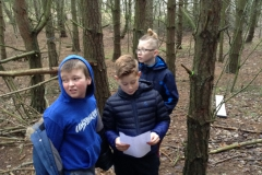 Year 6 Forest Schools Trail Building
